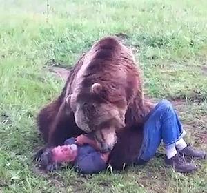 Video Un tenero e giocoso orso Grizzly