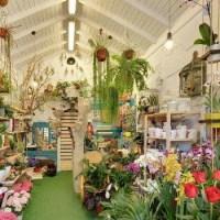 tienda del flores en maspalomas