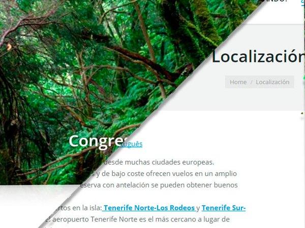 Desarrollo web: International Conference on Narratives of Health and Illness
