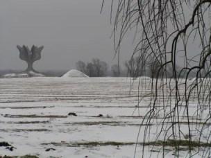 """Il """"fiore"""" di Jasenovac, fotografia di N. Cilinger"""