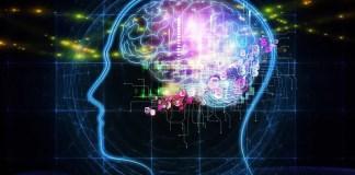 Reti neurali: modelli e aspetti applicativi