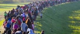 टर्कीले १६ हजारभन्दा बढी गैरकानूनीरूपमा यूरोप तथा अमेरिका जान लागेका आप्रवासीलाई फिर्ता गर्ने