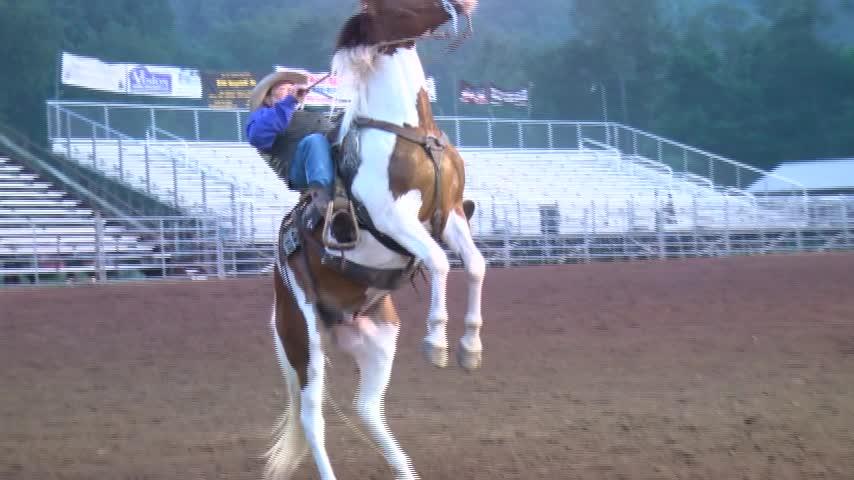Benton Rodeo 11 am