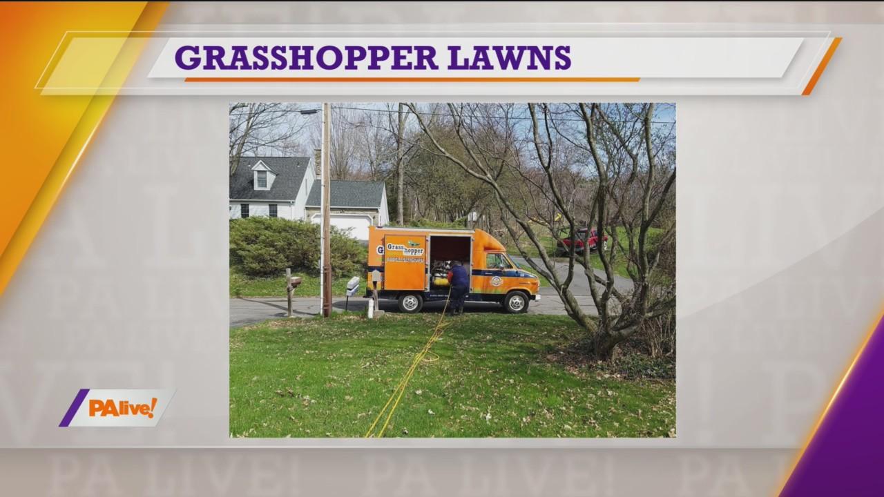 PAlive! Grasshopper Lawns March 31, 2020