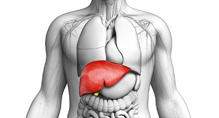 Liver Function Test Cost, Lft test cost, LFT Test,