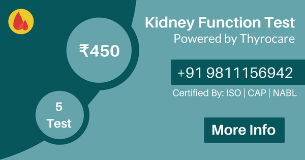kidney function test in delhi ncr