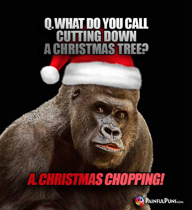 christmas jokes santa claus
