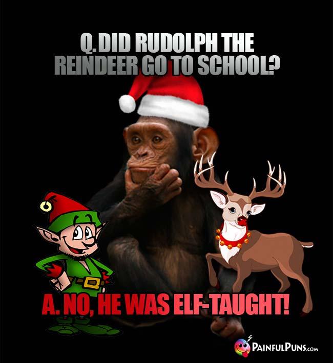 christmas jokes gifted xmas