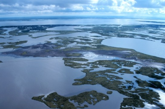 Coastal-wetlands_louisiana_noaa