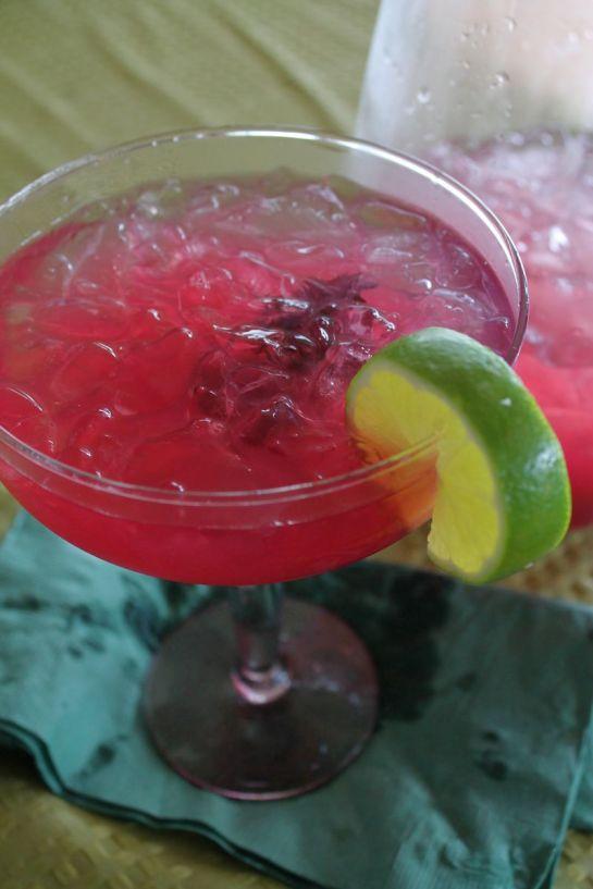 Wild Hibiscus Margaritas