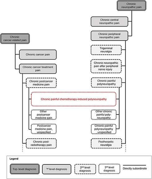 A New Classification of Chronic Pain for Better Patient Care and Research 3