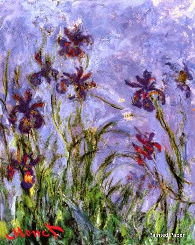 Irises-001