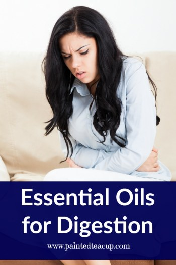 This post is all about essential oils for digestion! Learn which oils can help support healthy digestion & help alleviate uncomfortable digestive symptoms.