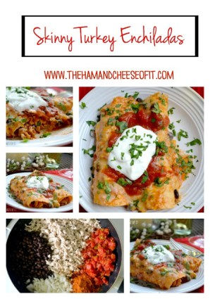 Skinny Turkey Enchiladas from The Ham and Cheese of It