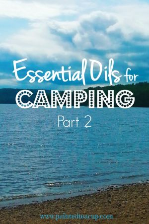 More essential oils for camping! DIY essential oil bug srapy, bug bite relief, tree sap removal. DIY hand sanitizer and more, all with essential oils! www.paintedteacup.com