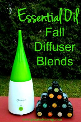 Essential Oil Fall Diffuser Blends. Amazing fall scents right in your living room. www.paintedteacup.com
