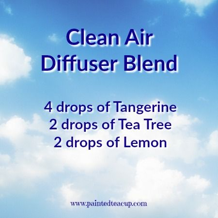 Clean air essential oil diffuser blend with tangerine, tea tree and lemon to make your home smell fresh and clean. Click the image to get 4 more tangerine diffuser blends and a free printable with all 5 diffuser recipes!