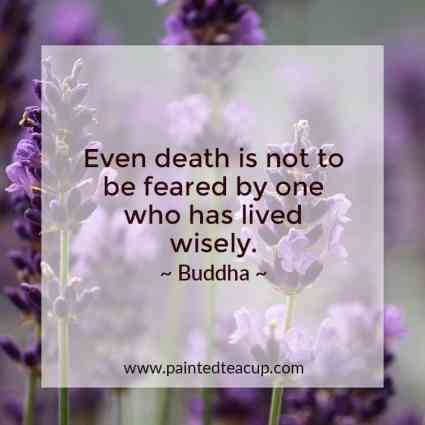 14 Beautiful Insightful Buddha Quotes