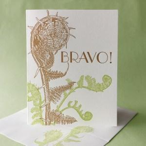 Fiddlehead Fern Bravo