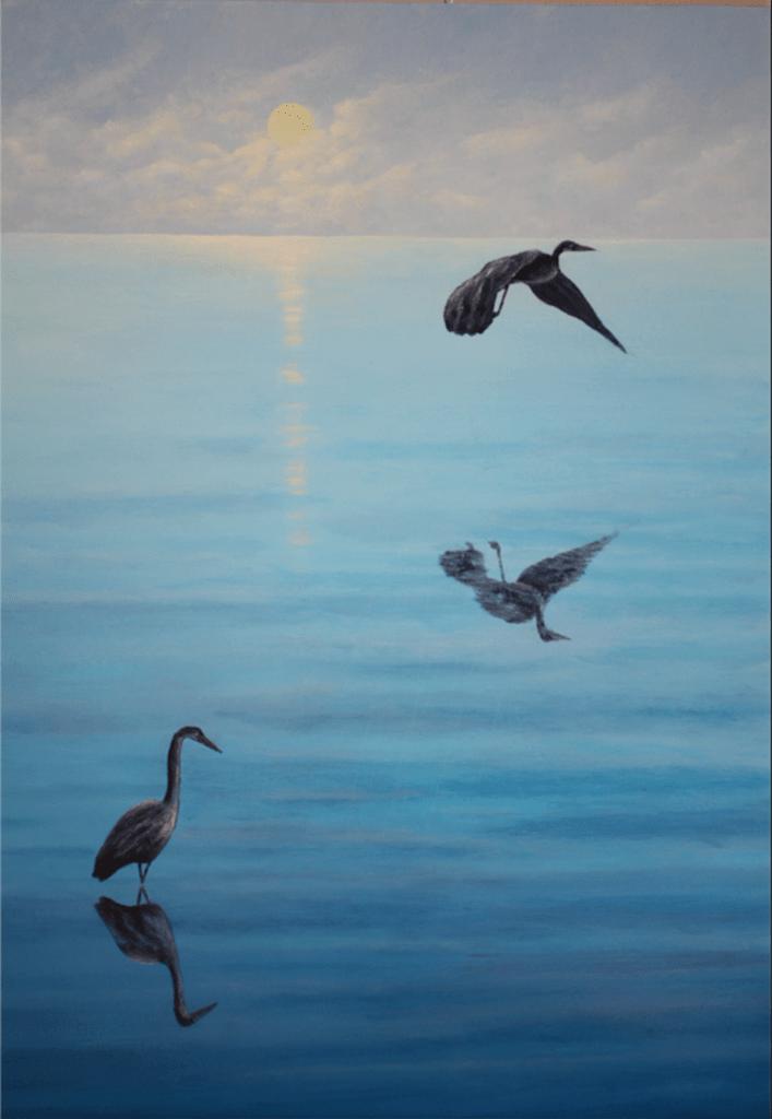 graham Mcintyre herons over sea