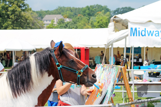 Painting Pony Minnow at the Ludwigs Corner Horse Show