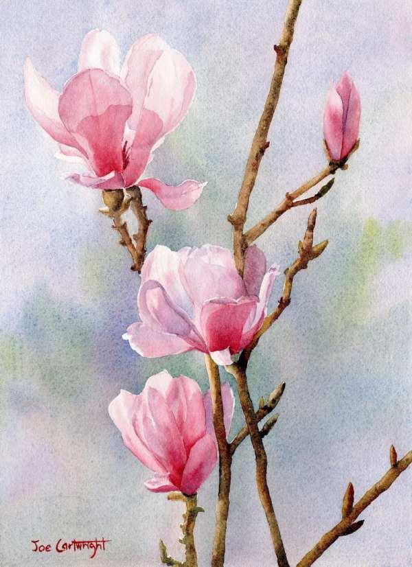Watercolor Paintings Joe Cartwright Watercolour Painting