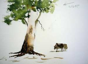 Finished gum tree watercolor painting demonstration