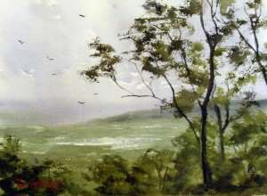 Watercolor painting From Tamborine Mountain, Queensland