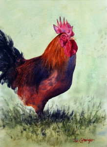 Watercolor painting Rhode Island Red Rooster by Joe Cartwright