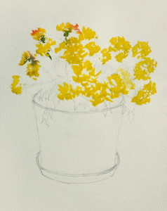 Start with the bright yellow of the chrysanthemum flowers using Cad Yellow Pale