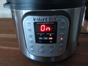 Instant Pot Manual - Water Test Begin Turn On