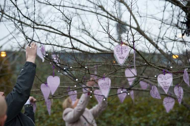 suicide memorial tree, purple hearts
