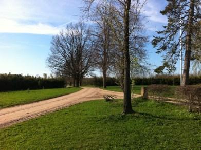 Sissesõidutee kevadel