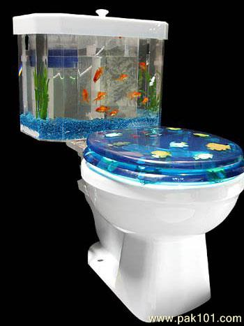 Naughty Wallpapers With Quotes Funny Picture Funny Fish Tank Pak101 Com