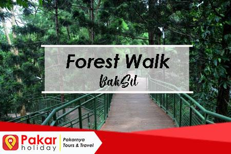 Harga Tiket Dan Spot Menarik Di Forest Walk BakSil