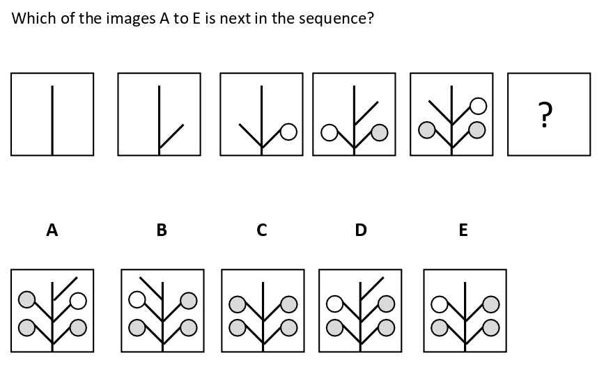 Non Verbal Intelligence Test 2