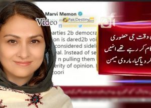 marvi memon critices pmln