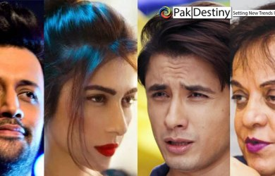 ali zafar meesha sahfi fight real reason atif aslam shireen mazari