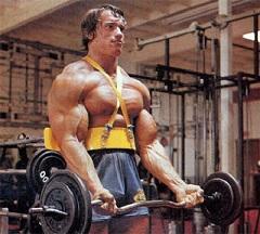 armagedon trening biceps