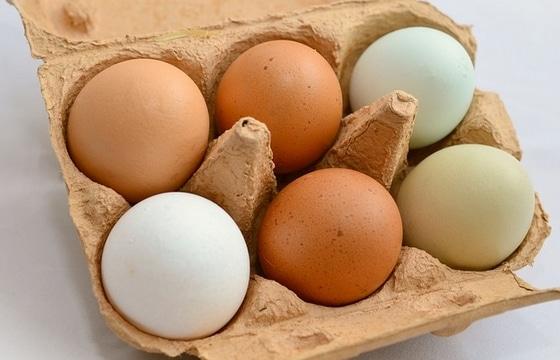 dieta norweska jaja