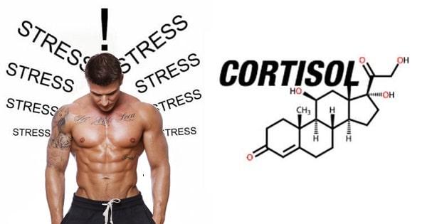 kortyzol hormon stresu objawy leczenie