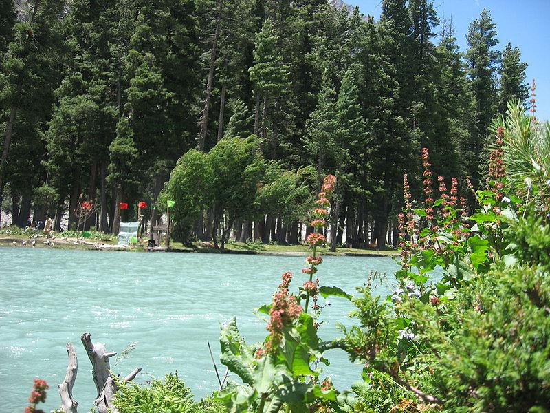 Swat Valley  Mahodand Lake a green view  Paki Mag