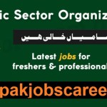 PO Box 1138 Islamabad Public Sector Organization