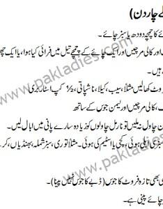Dr smith jhatka diet for days in urdu english also plan weight loss plus belle la vie pblv rh plusbellela viespot
