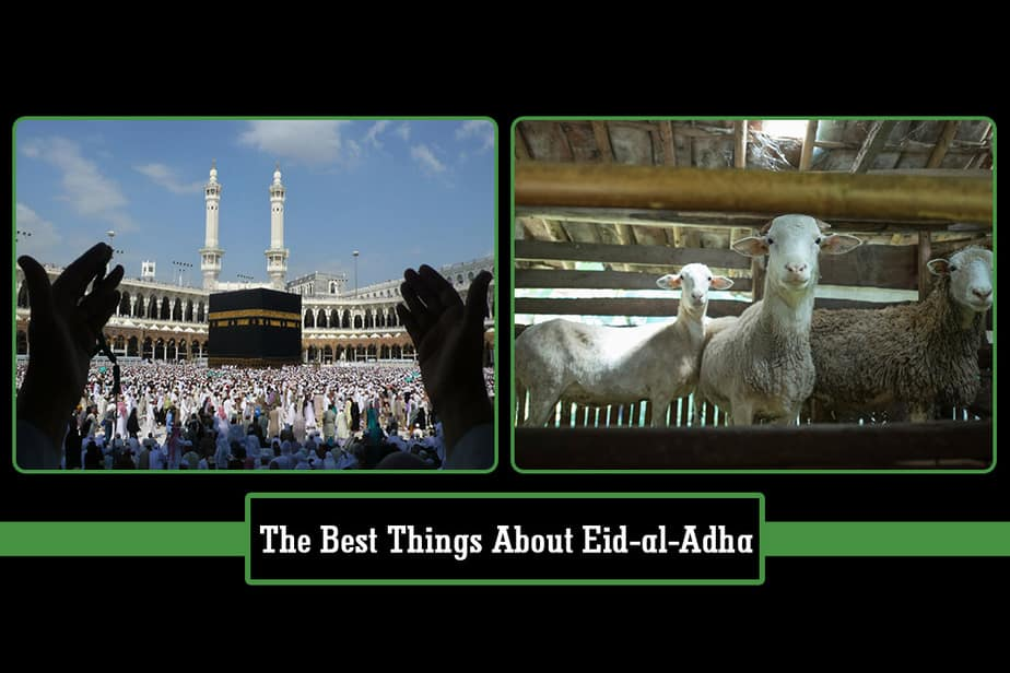 The Best Things About Eid Al Adha-Festival Of The Sacrifice | Paktales
