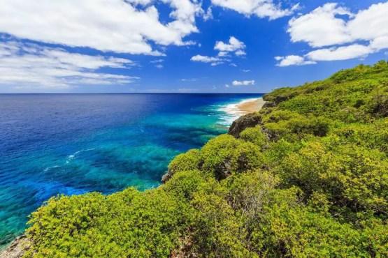 niue islands, south pacific ocean, tourist, population