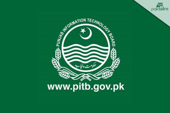 Punjab driving license verification