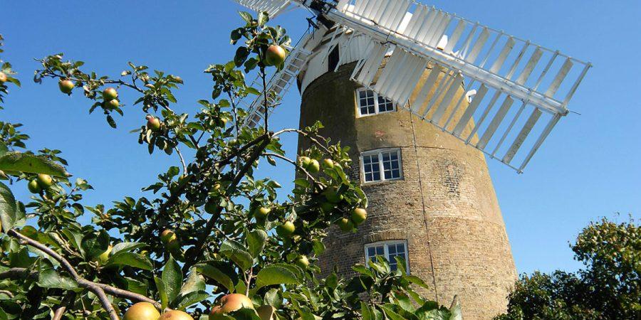 Landmark housing loan agreed for Haddenham