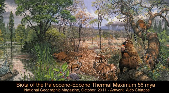 Fossil Focus: The First Mammals