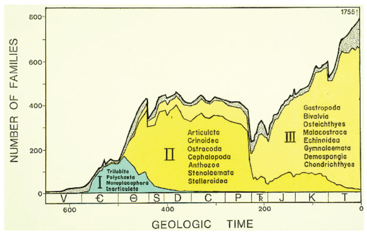 Figure 2 — The famous Sepkoski diversity curve showing key diversification events in the history of marine life on Earth. From: Sepkoski (1981).